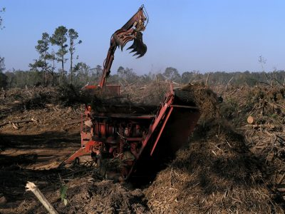 http://www.afexsystems.com/wp-content/uploads/2020/09/forestry-industry2-400x300.jpg
