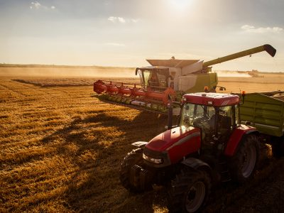 Wheat harvesting combine plowing fields. Agriculture heavy equipment, combine, harvesting,