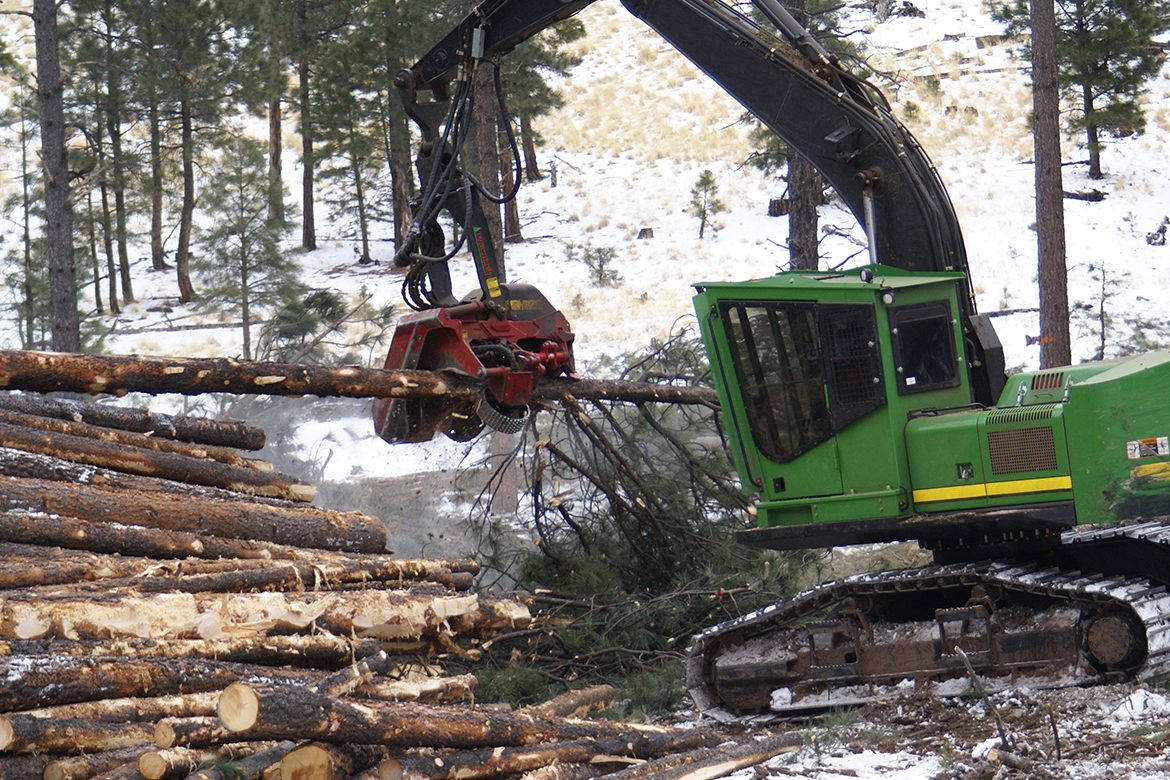 https://www.afexsystems.com/wp-content/uploads/2020/09/forestry-industry-1170x780.jpg