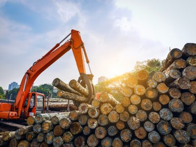 Swing machine forestry equipment stacking logs